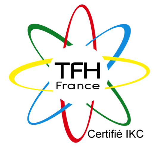 Touch For Health France